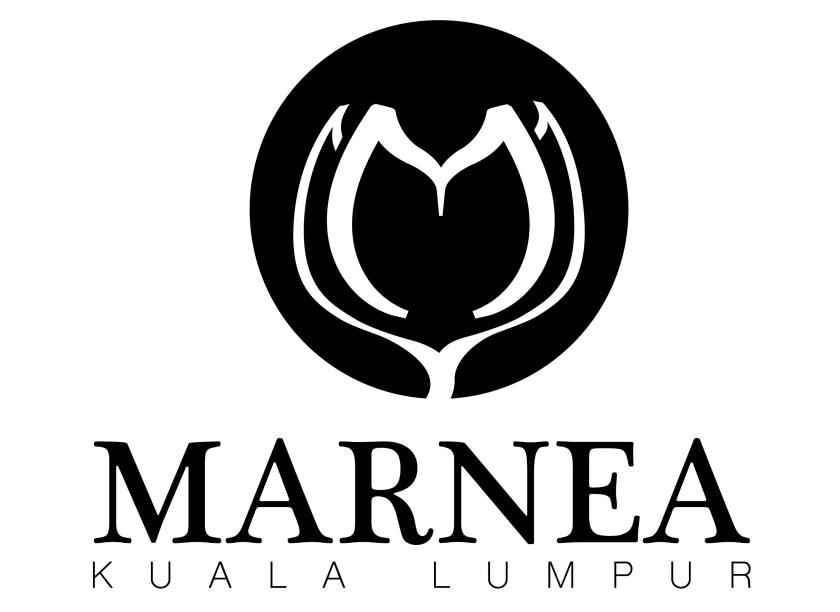 logo-opt3.png